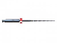 BioRaCe BR2 4% 21mm  6 St.